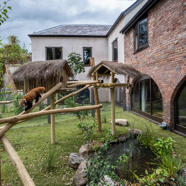 Red-Panda-Cottages-External-03-600x600
